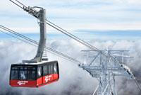 Winter travel deals to start 2014