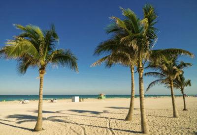 caribbean resorts update