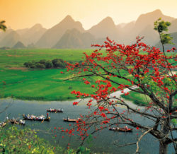 Vietnam longboats Windstar