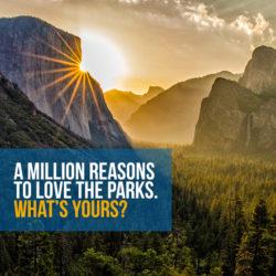 National Parks Set Record for Visitors
