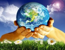 Fighting Climate Change One Project at a Time