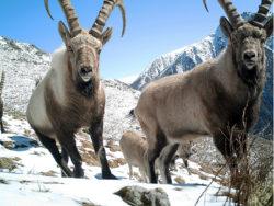 UNESCO Adds 23 Biosphere Eco Sites Around the World