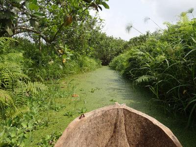 UNESCO Biosphere Reserve Benin @ecoxplorer
