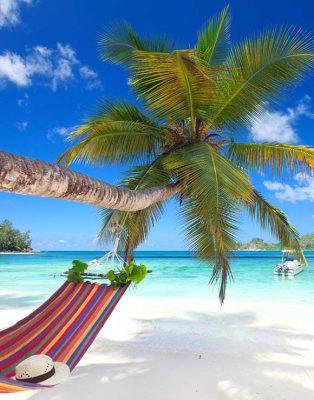 beach www.ecoxplorer.com