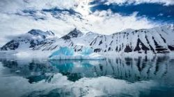 Explore Antarctica in a Seven Day Online Festival